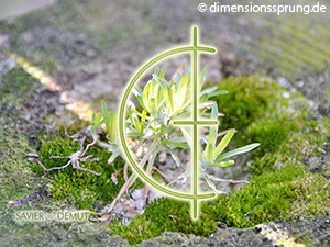 Meditationskarte / Energiesymbolkarte SAVIER - Demut