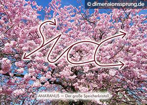 Meditationskarte / Energiesymbolkarte AMA'RANUS - der große Speicherkristall
