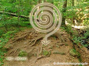Meditationskarte / Energiesymbolkarte<BR/>ARIS - Erdung