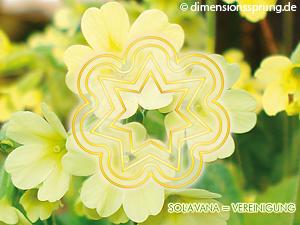 Meditationskarte / Energiesymbolkarte SOL'A'VANA (SOLAVANA)  - Vereinigung