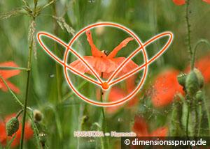 Meditationskarte / Energiesymbolkarte HAR'ATORA
