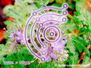 Meditationskarte / Energiesymbolkarte RUNA - Fülle